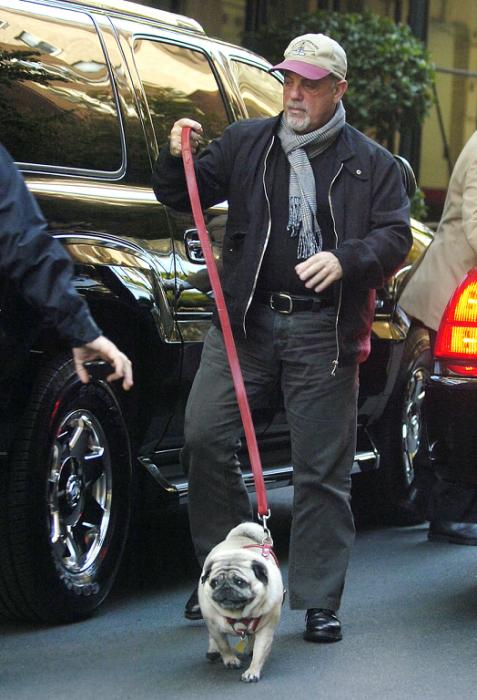 Billy Joel and pug