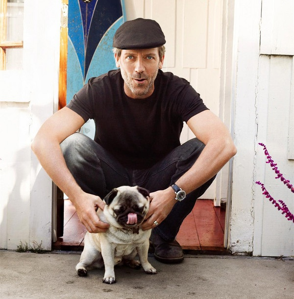 hugh-laurie-pug-dog