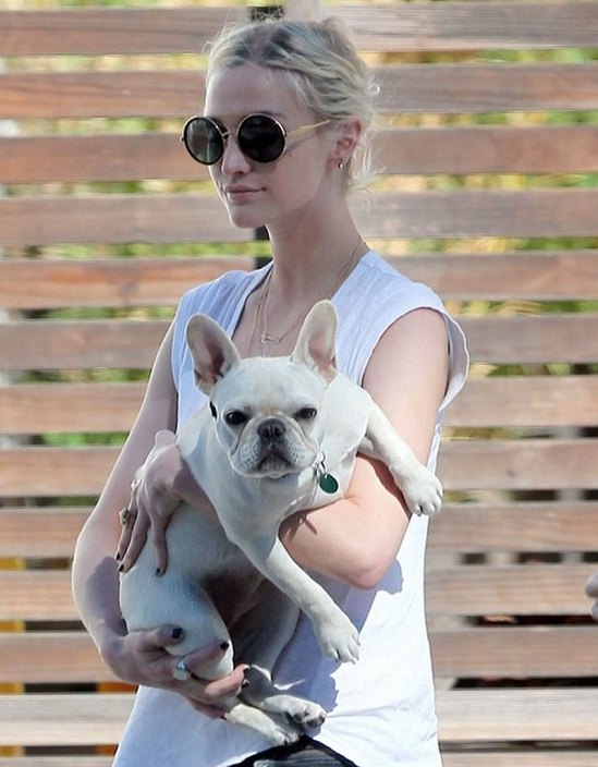 Ashlee Simpson dog