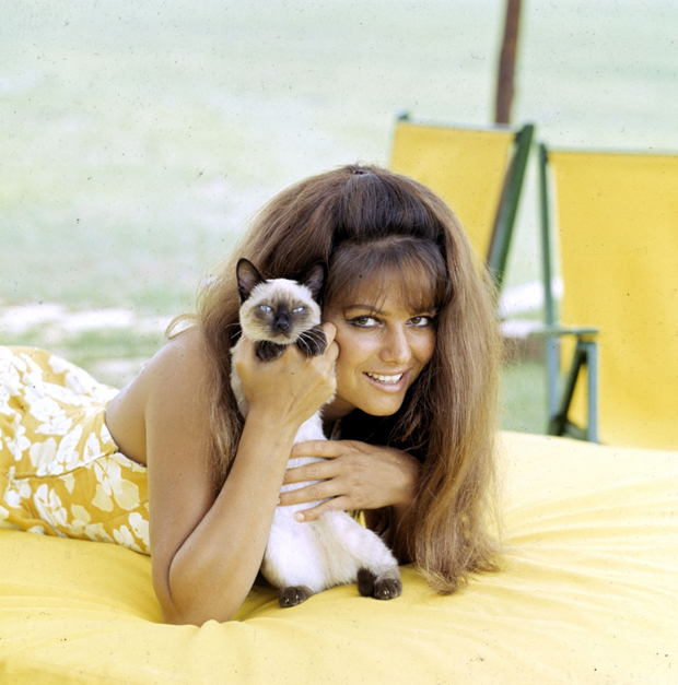 Claudia Cardinale with cat