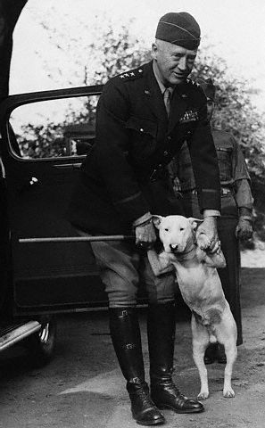 General Patton dog