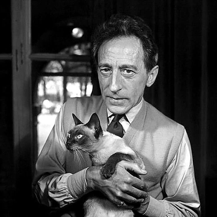Jean Cocteau with cat