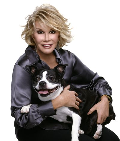 Joan Rivers Boston terrier