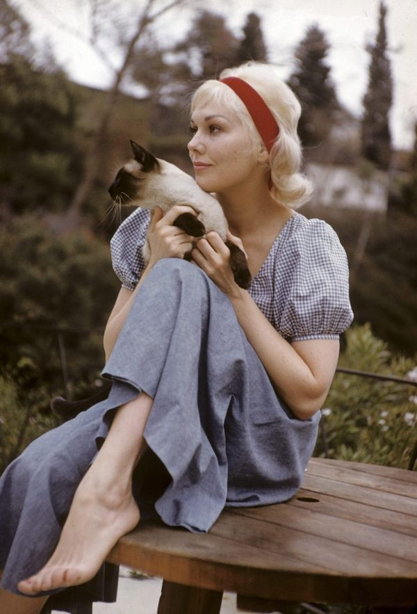 Kim Novak with cat
