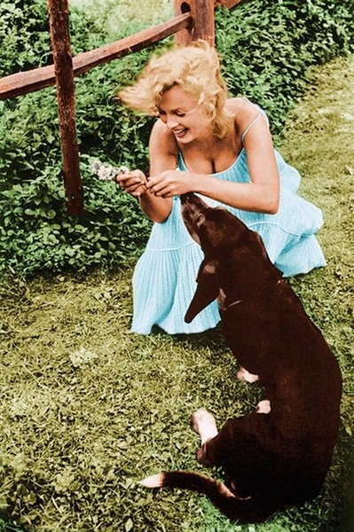 Marilyn Monroe and her dog