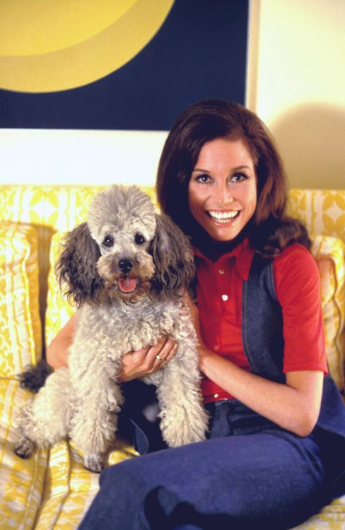 Mary Tyler Moore poodle