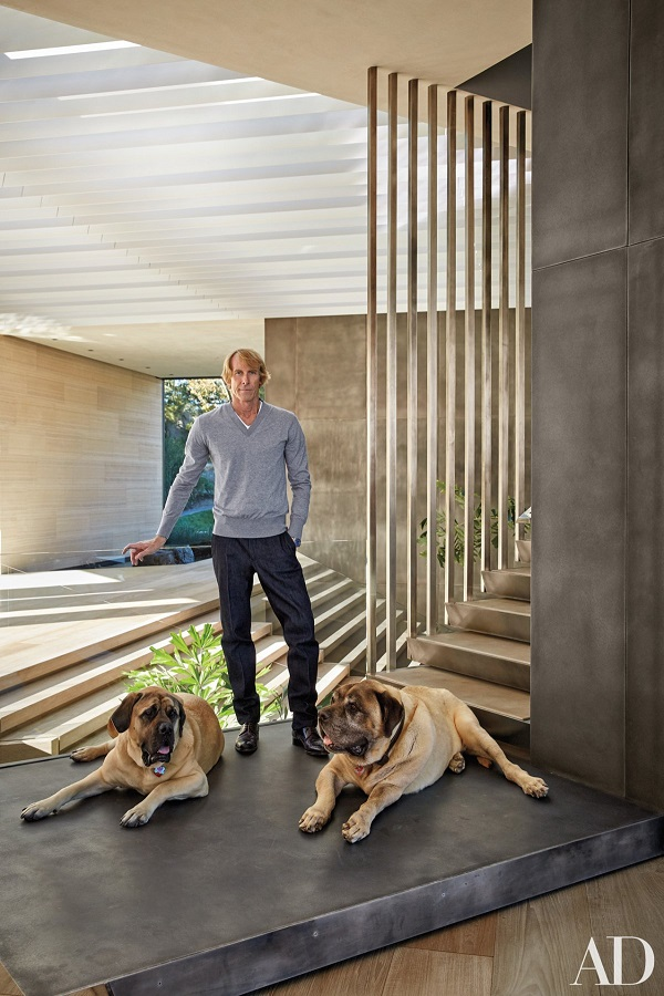 Michael Bay with mastiffs
