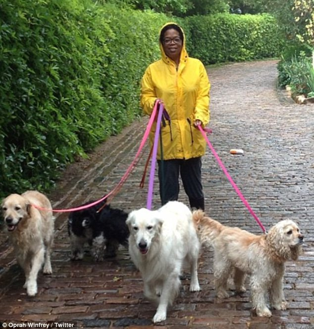 Oprah Winfrey with dogs
