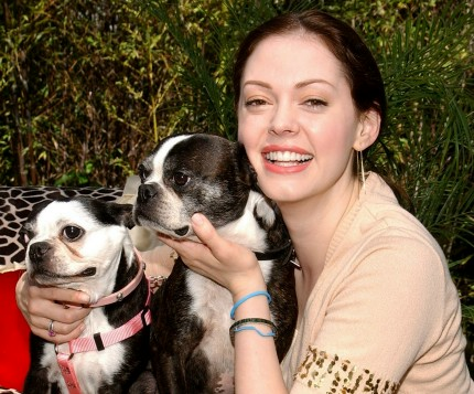 Rose McGowan dog
