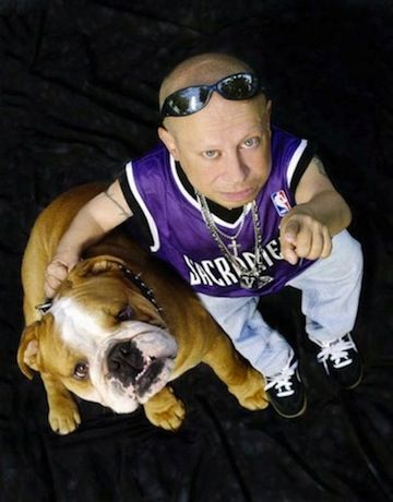 Verne Troyer bulldog