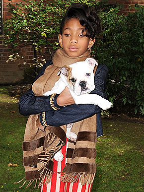 Willow Smith bulldog