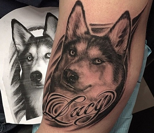 The 14 Coolest Husky Tattoo Designs In The World