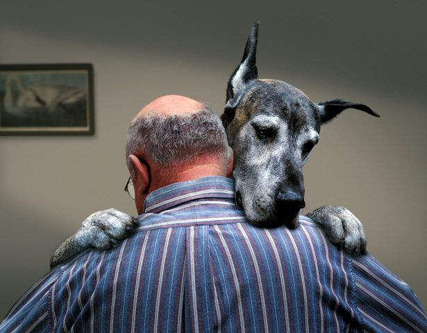 man hug his great dane