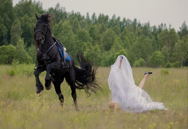 The 12 Most Horse Things That Have Ever Happened In The ...