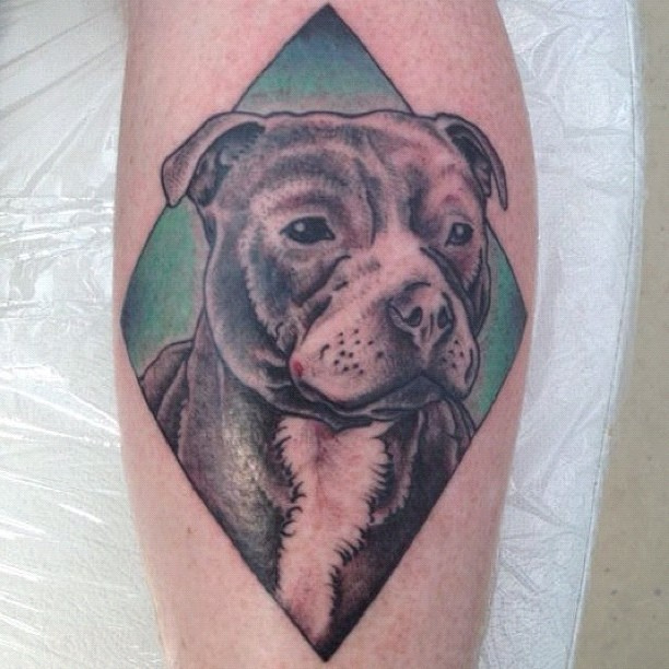 the 12 coolest staffordshire bull terrier tattoo designs in the world. Black Bedroom Furniture Sets. Home Design Ideas