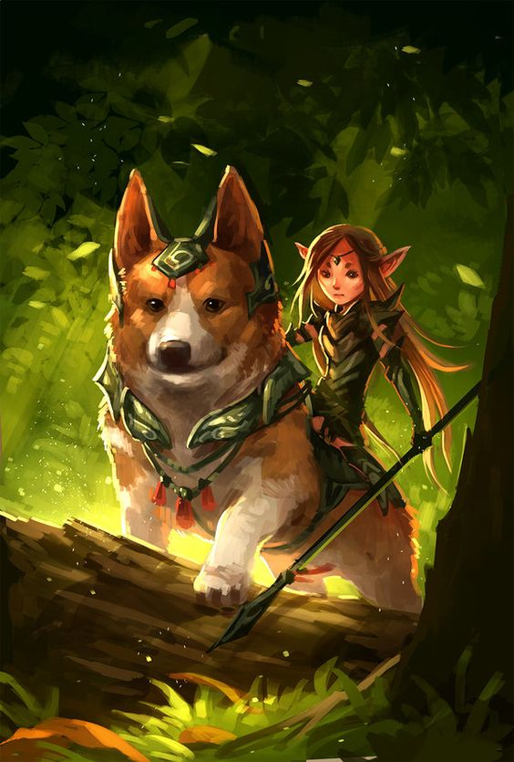 magical-corgi