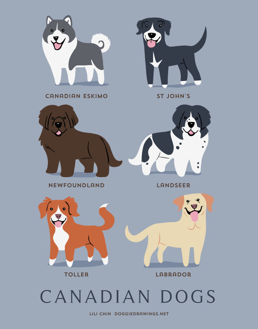 Canadian dogs