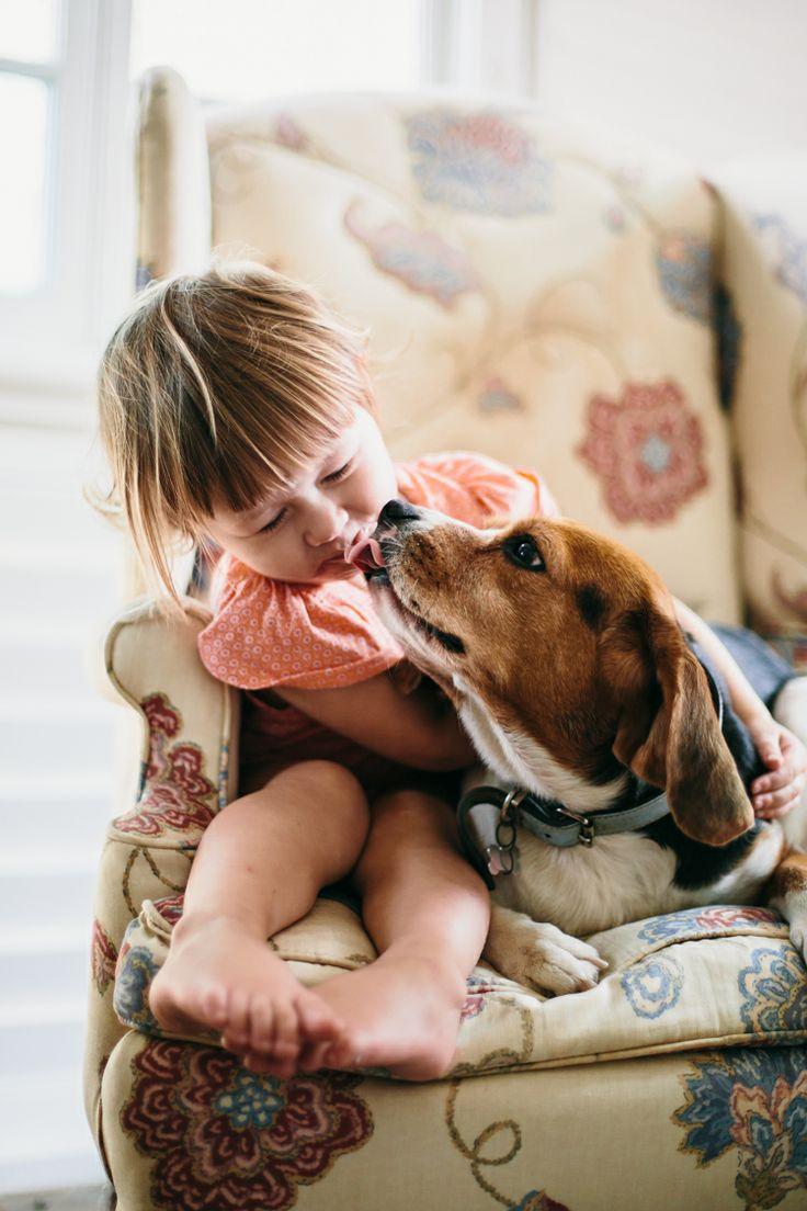 beagle and children