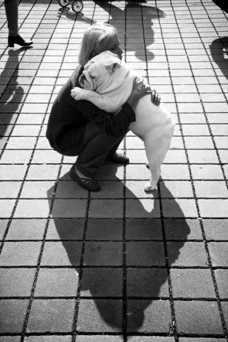 bulldog hug woman pics
