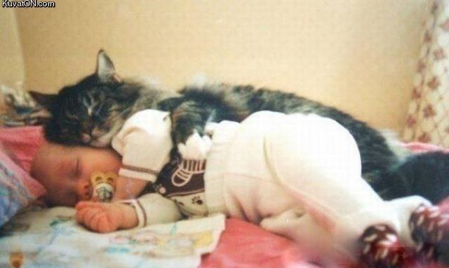 children cat sleep together