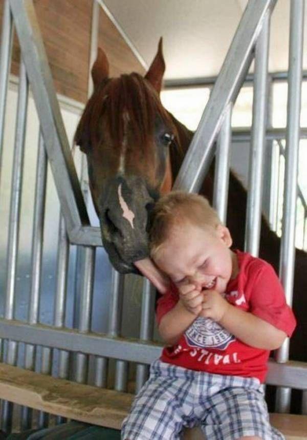 horse child play
