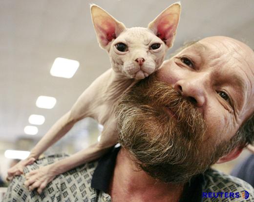 man kitty cute face