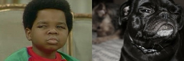 Arnold from Diff'rent Strokes and pug