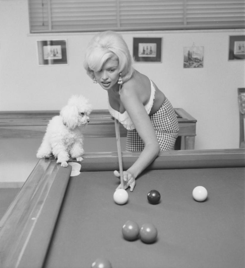 Which famous person below owned a poodle?