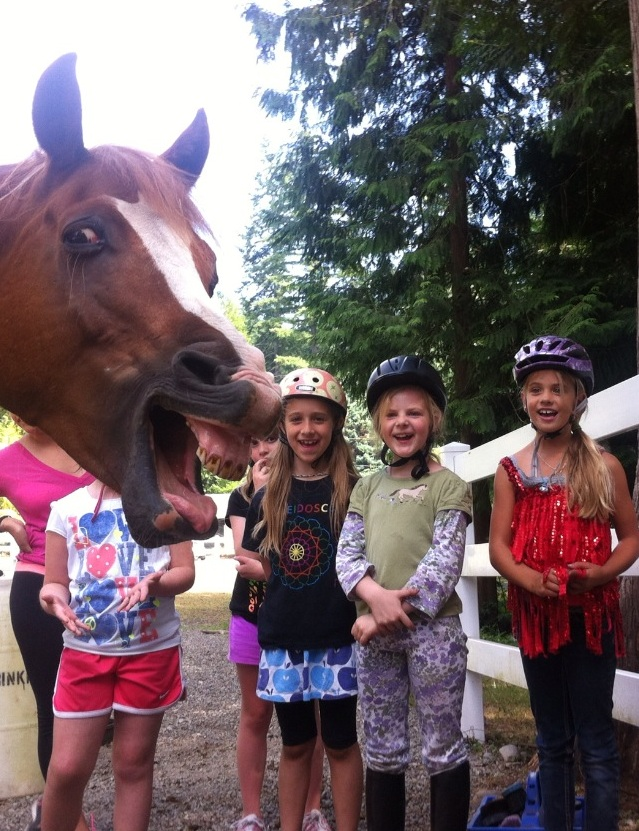 horse and children funny