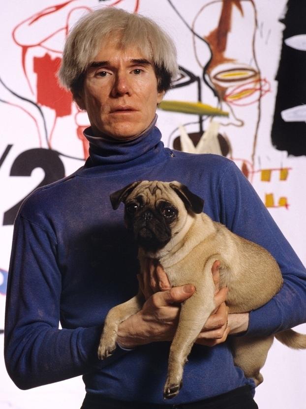Andy Warhol pug