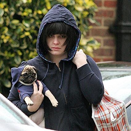 Kelly Osbourne pug