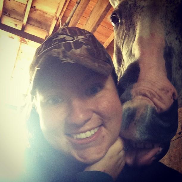 funny horse eat girl