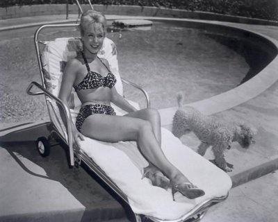 Barbara Eden poodle