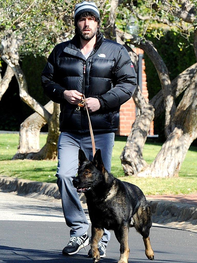 Ben Affleck german shepherd