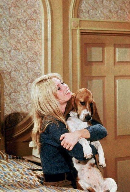 Brigitte Bardot with basset hound