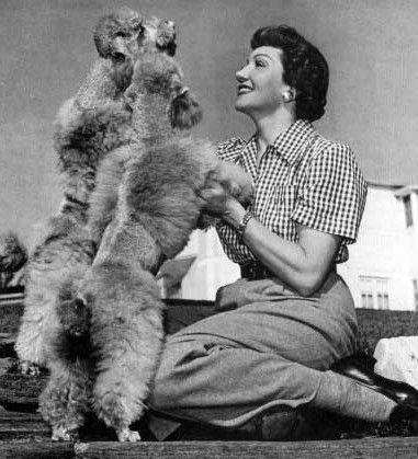 Claudia Colbert poodles
