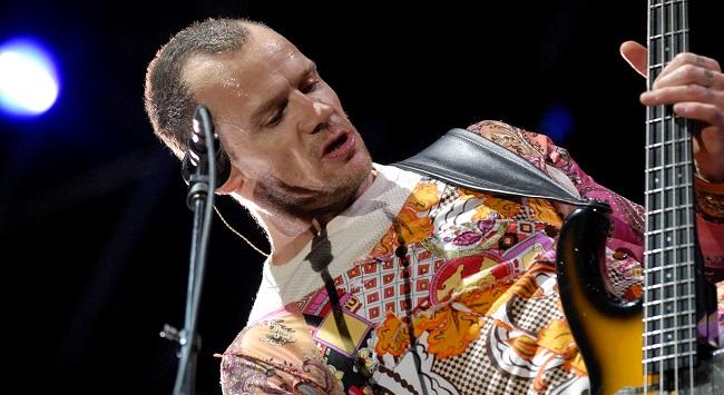 Flea musician