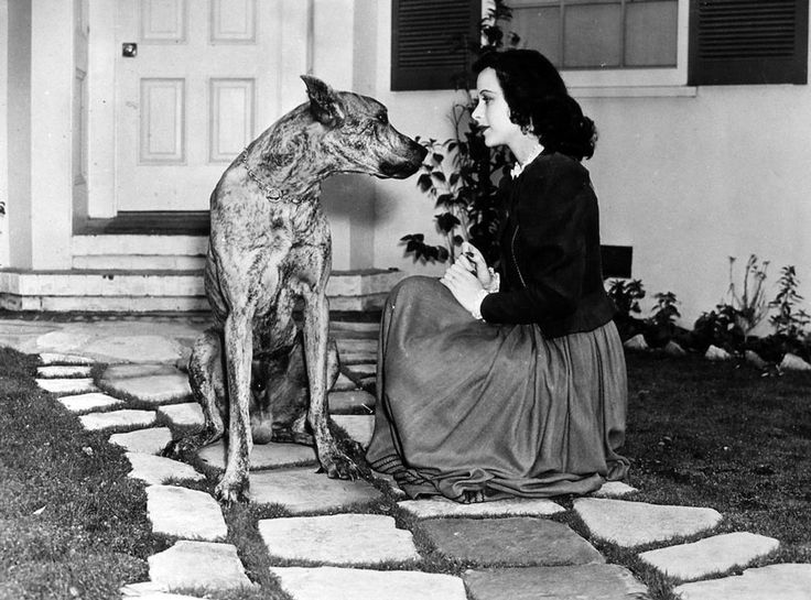 Hedy Lamarr with dog
