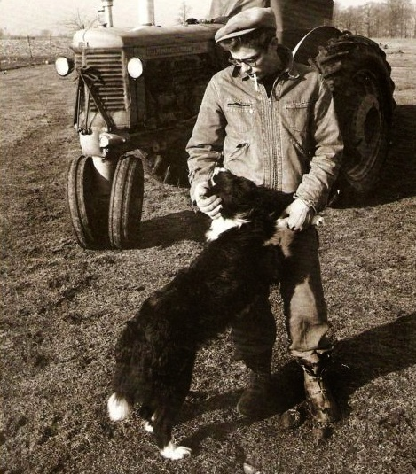 James Dean dog