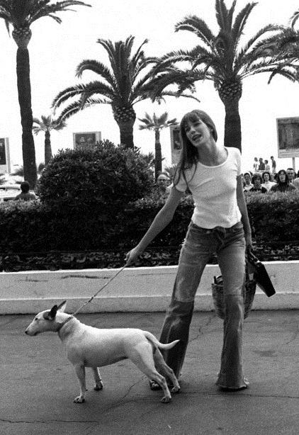 10 Celebrities With English Bull Terriers 1