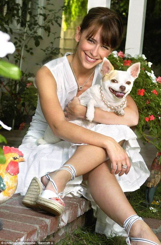 Jennifer Love Hewitt chihuahua