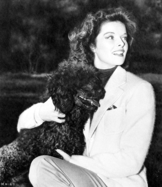 Katharine Hepburn poodle