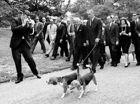 Lyndon Baines Johnson with beagles