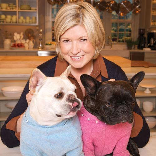 Martha Stewart dogs