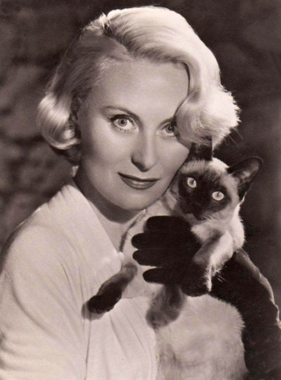 Michèle Morgan cat pics