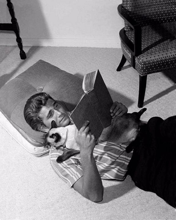 Michael Landon cat book