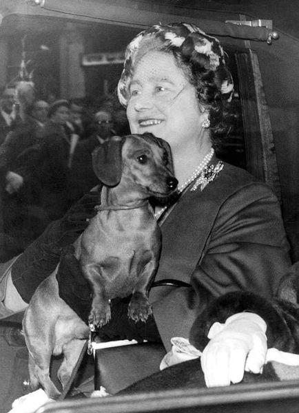 Queen Mother & dachshund