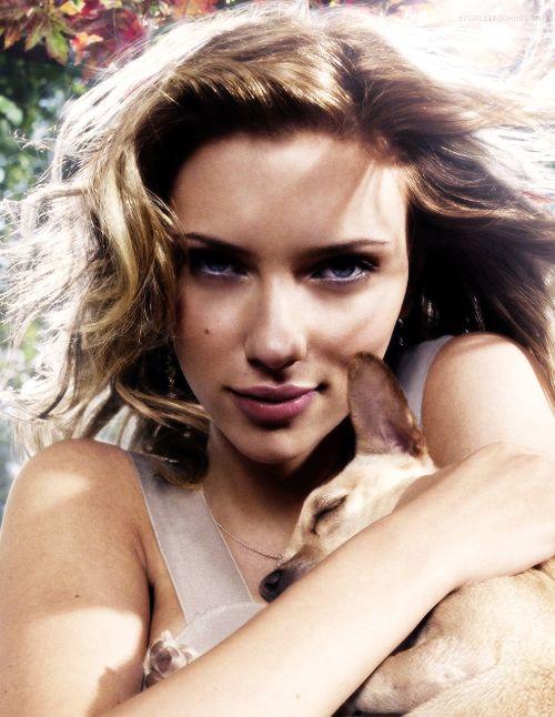 Scarlett Johansson chihuahua