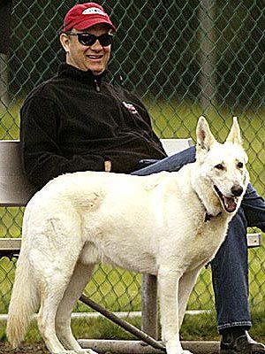 Tom Hanks white GSD
