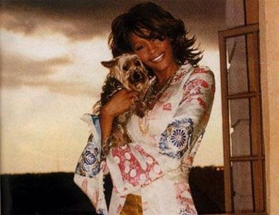 Whitney Houston yorkie